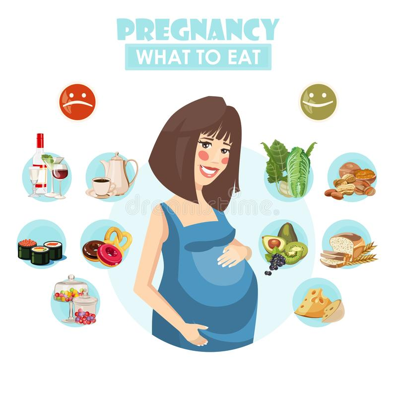 Pregnant woman. What to eat. Vector colorful illustration with pregnancy concept. Healthy food stock illustration