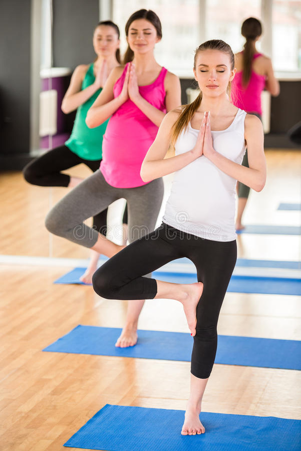 Pregnant women at gym. stock image. Image of leisure ...