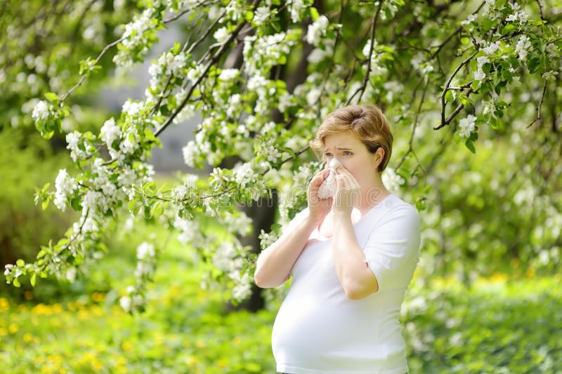 Pregnant young woman sneezing and wipes nose with napkin during walking in spring park. Flu season, cold rhinitis. Allergic people. Sick person royalty free stock image