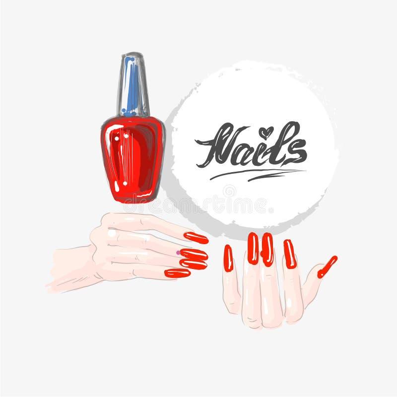 Pregue a arte e o verniz para as unhas vermelho, mãos fêmeas bonitas com pregos vermelhos e pregos da palavra que tiram o vetor ilustração do vetor