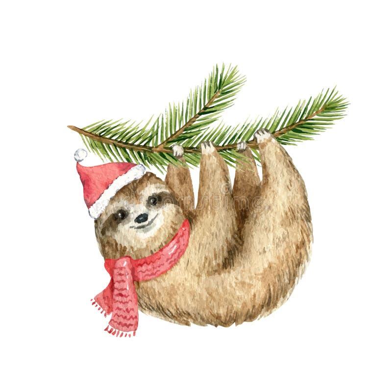 Preguiça bonito do cartão de Natal do vetor da aquarela que pendura em um ramo do abeto ilustração stock