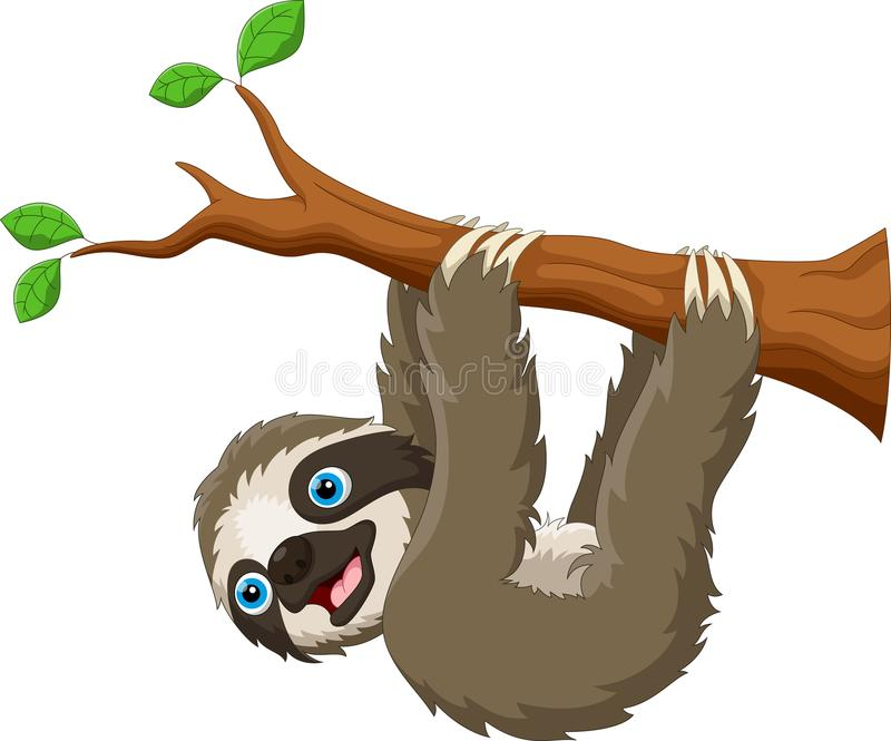 Preguiça bonito dos desenhos animados que pendura na árvore isolada no fundo branco ilustração do vetor