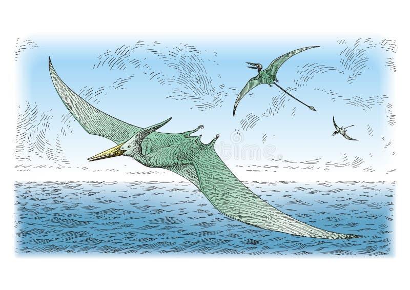 Download Prehistoric birds stock vector. Image of primitive, group - 13737438