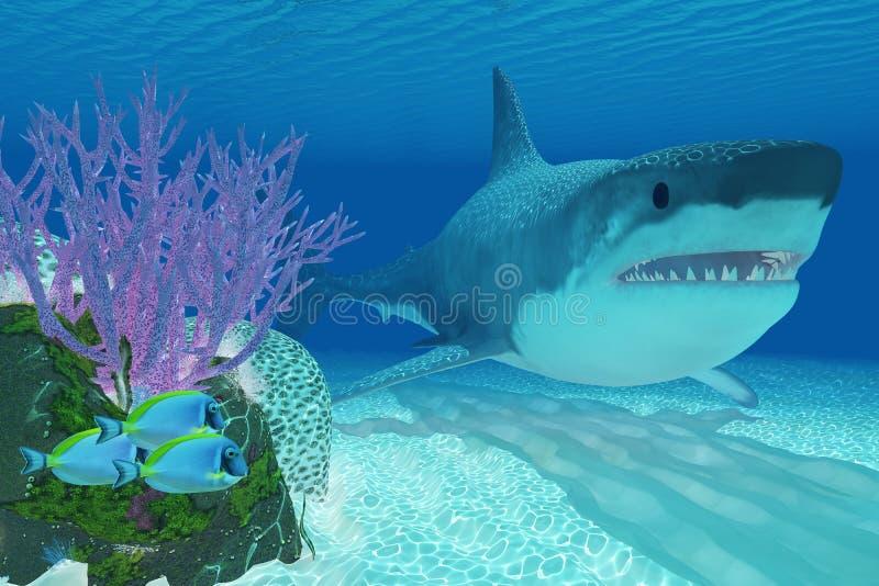 Prehistoric Megalodon Shark Stock Illustration - Image: 35287509