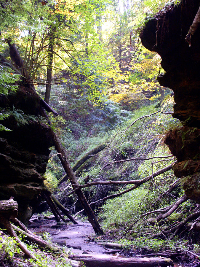 Prehistoric Path stock photography