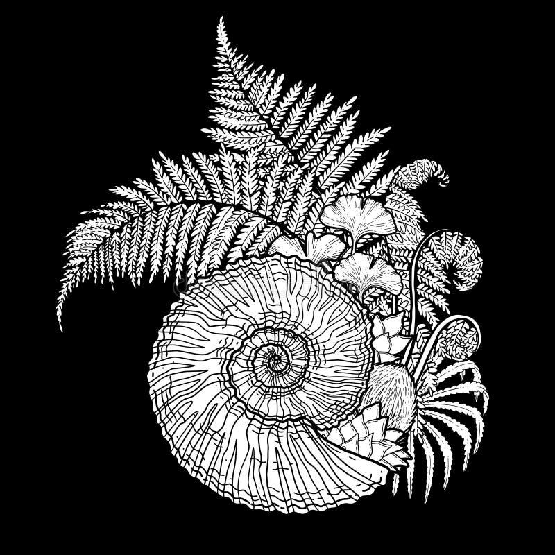 Prehistoryczne graficzne seashell i paproci gałąź ilustracji