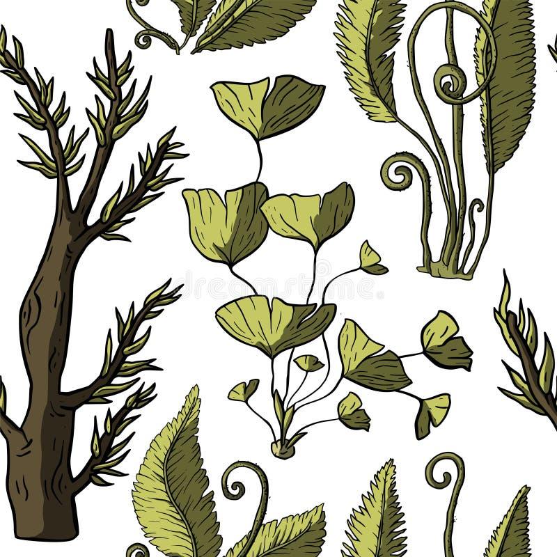 Prehistoryczne wektor rośliny ilustracji