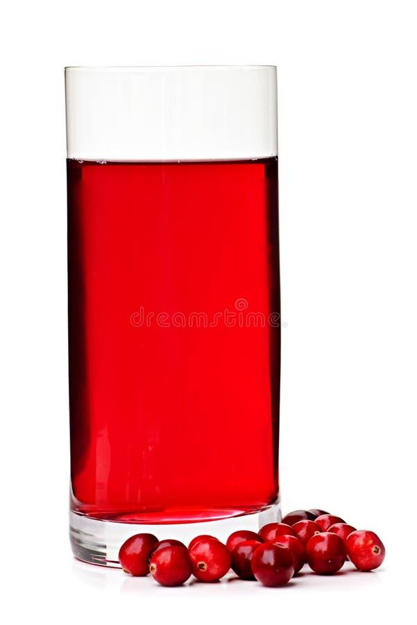 Preiselbeersaft im Glas lizenzfreies stockbild