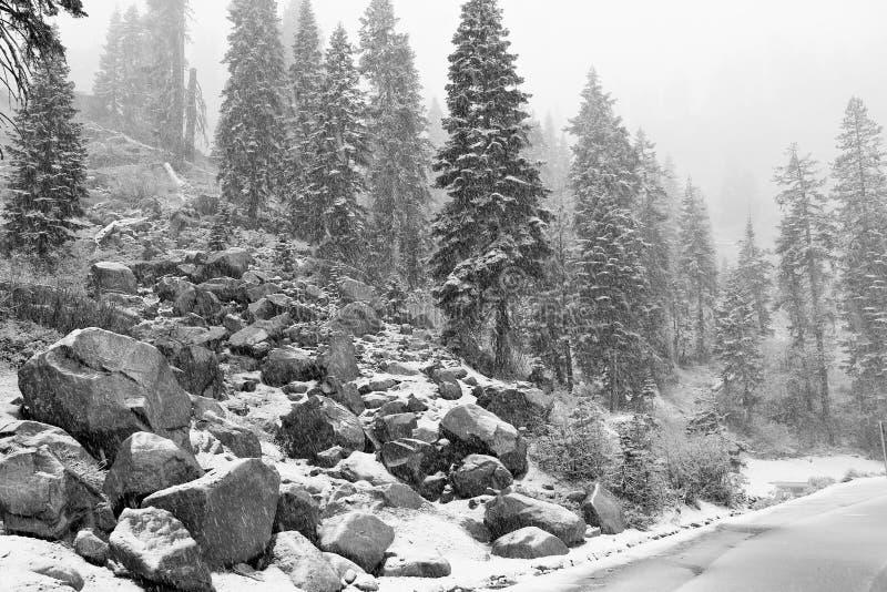 Première chute de neige de la saison photographie stock