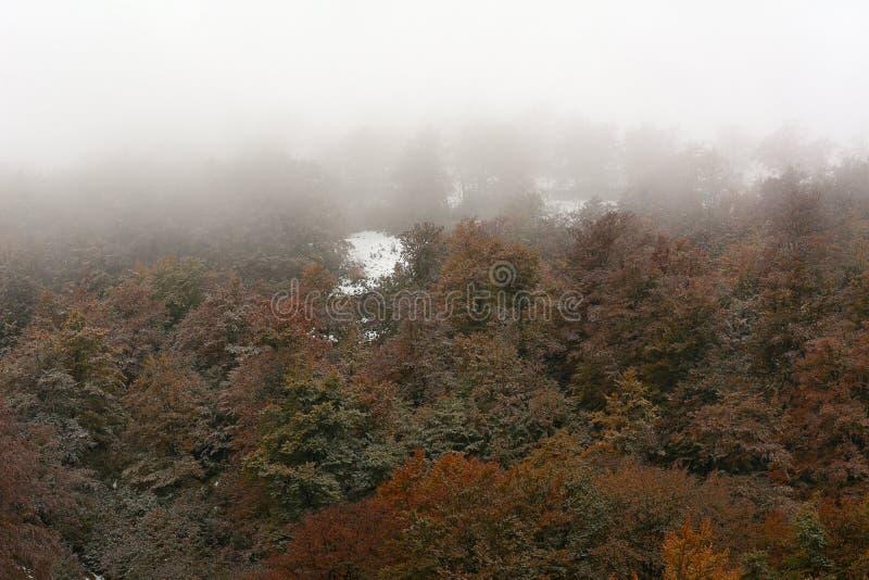 Première neige d'automne images libres de droits