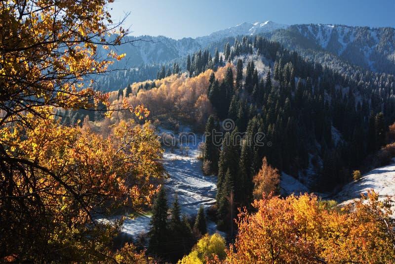 Première neige en montagnes d'automne photographie stock libre de droits