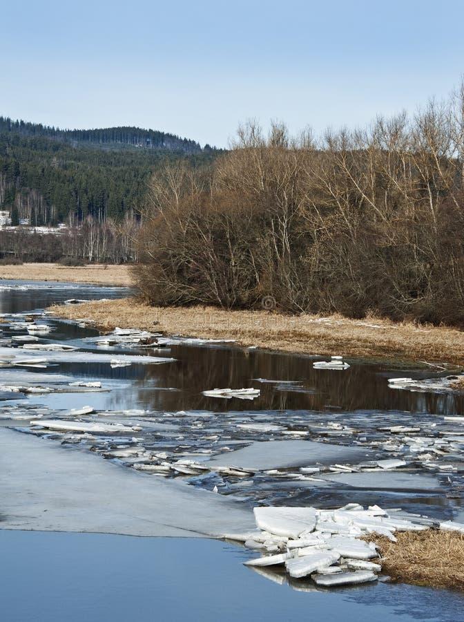 Première source - fleuve de montagne avec de la glace de vol photos stock