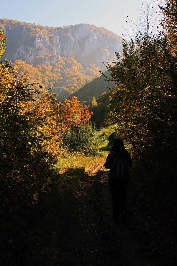 Première vue de la montagne image libre de droits