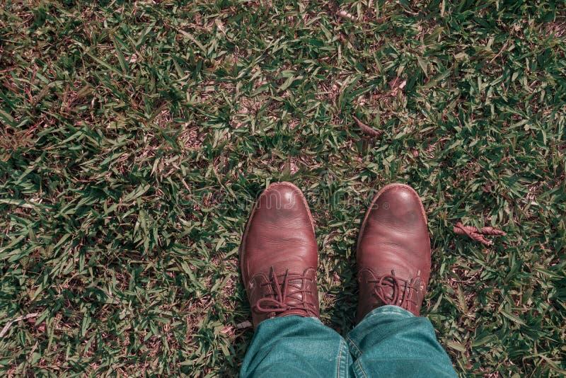 Première vue de personne des pieds de l'homme avec de vieilles chaussures brunes sur l'herbe photos libres de droits
