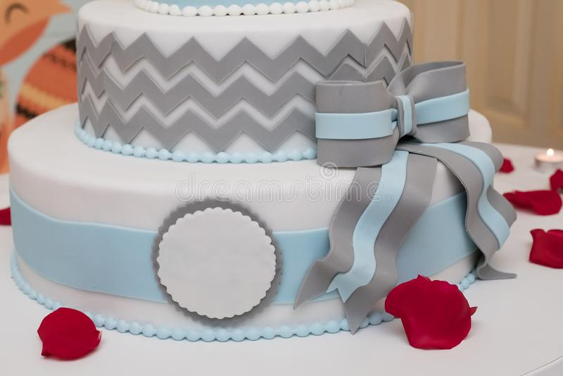 Premia tort obrazy royalty free