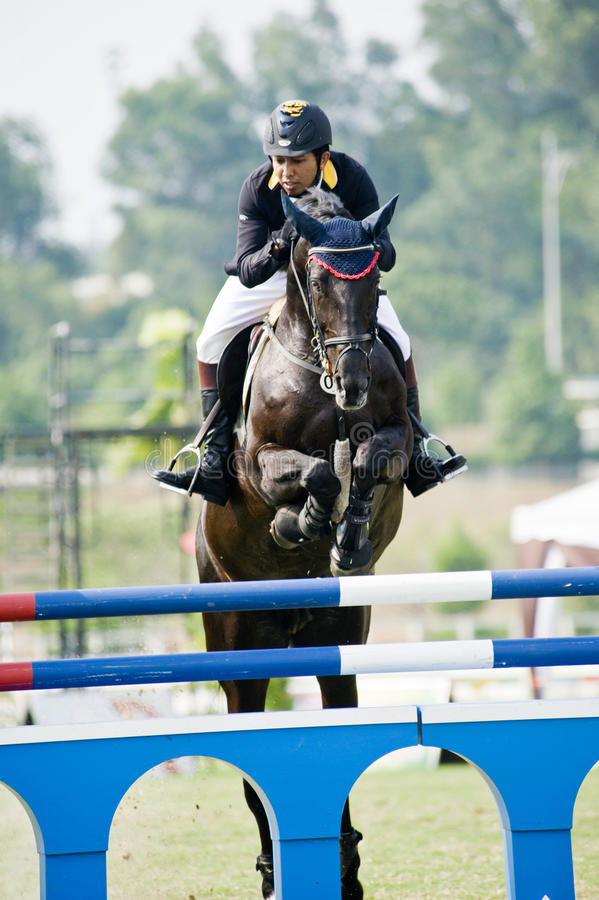 Download Premier Cup Equestrian Show Jumping Editorial Image - Image: 10398390