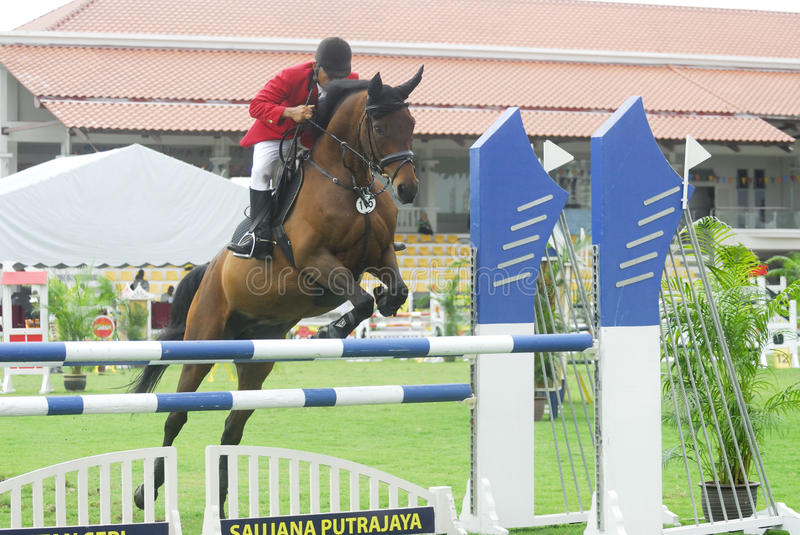 Download Premier Cup Equestrian Show Jumping Editorial Photo - Image of hurdle, jumping: 10513091