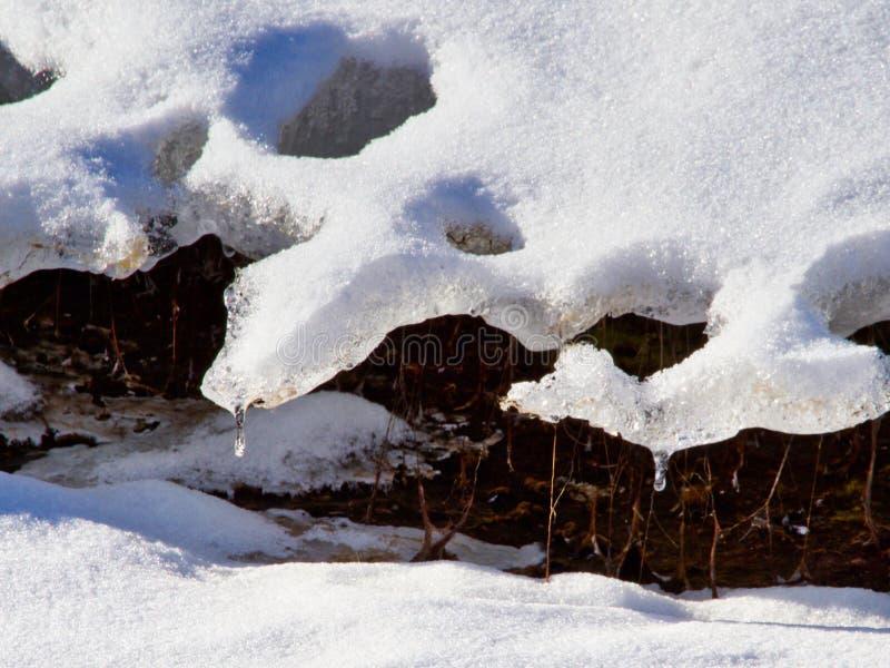 Premier dégel photographie stock