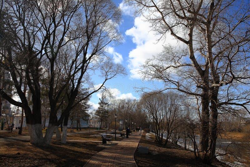 Premier ressort en parc photo stock