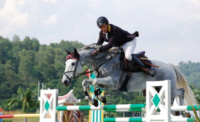 premiercup 2010 лошади скача стоковая фотография
