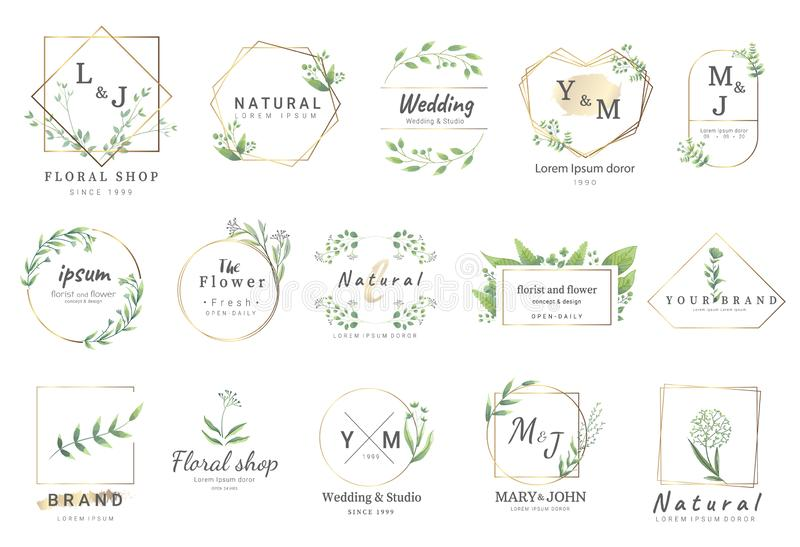 Premium floral logo templates for wedding,logo,banner,badge,printing,product,package.vector. Premium floral logo templates for wedding,logo,banner,badge,product vector illustration