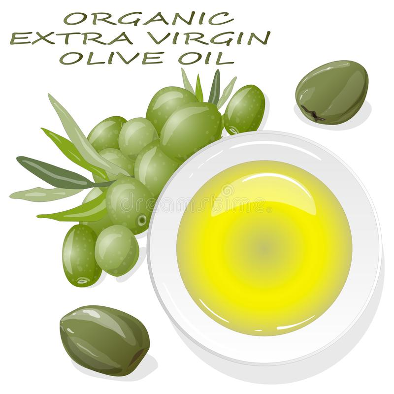 Premium virgin olive oil and some olives isolated on a white background. Vector illustration hand made vector illustration