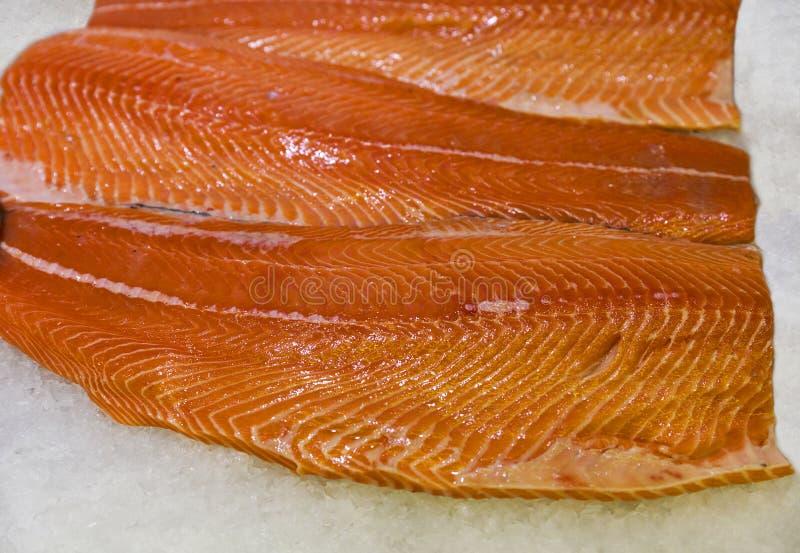 Prendedero de color salmón refrescado crudo en el primer del hielo fotos de archivo libres de regalías
