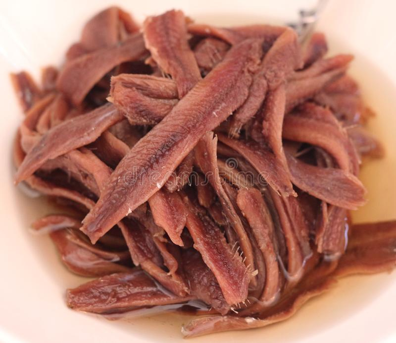 Prendedero de la anchoa en aceite imagen de archivo