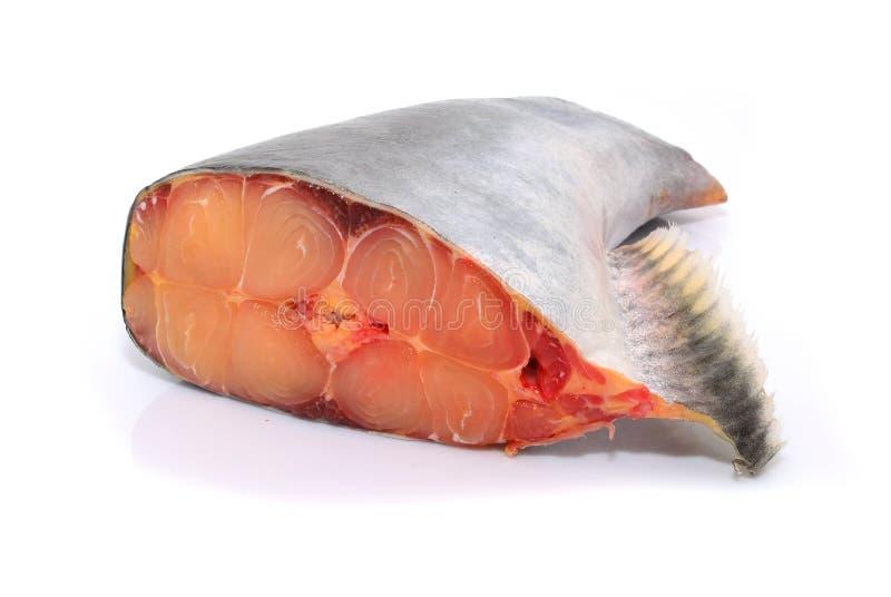 Prendedero de pescados preparado fresco del pangasius en el fondo blanco foto de archivo