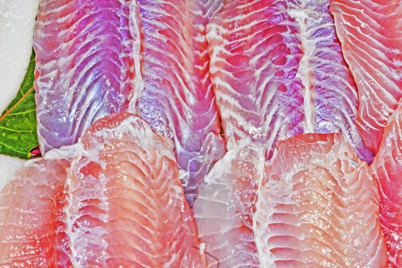 Prendederos de pescados frescos fotografía de archivo libre de regalías