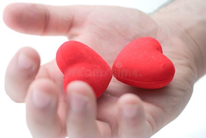 Prendendo dois corações fotografia de stock royalty free
