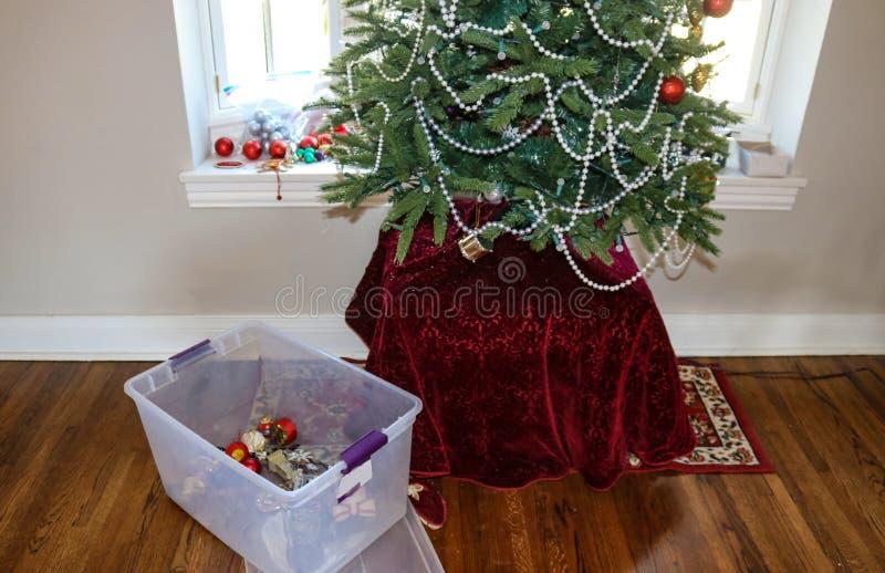 Prendendo giù l'albero di Natale La maggior parte dei ornamenti andati con il recipiente di plastica che tiene alcuno sul pavimen fotografia stock
