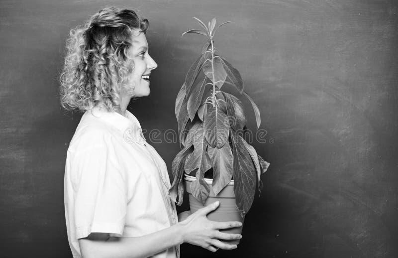 Prendete le vostre cure Concetto di Florist La lezione di Botania e biologia Esperto botanico Istruzione botanica Botany riguarda fotografie stock libere da diritti