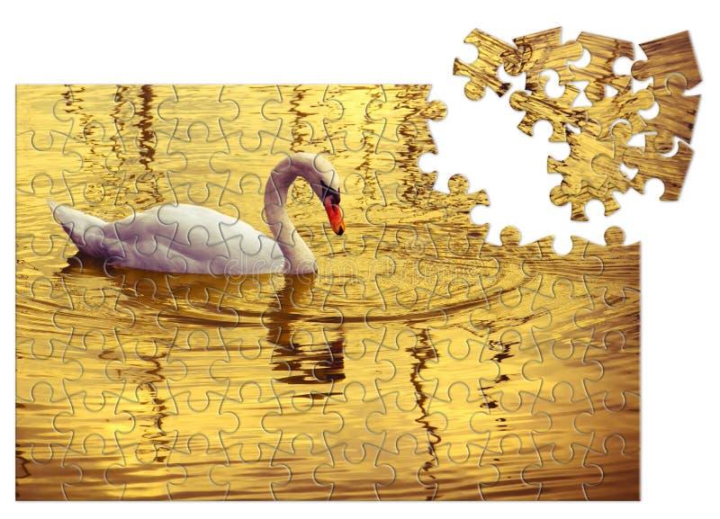 Prenez soin de votre beauté - cygne blanc à l'arrière-plan d'or - image de concept dans la forme de puzzle denteux photographie stock libre de droits