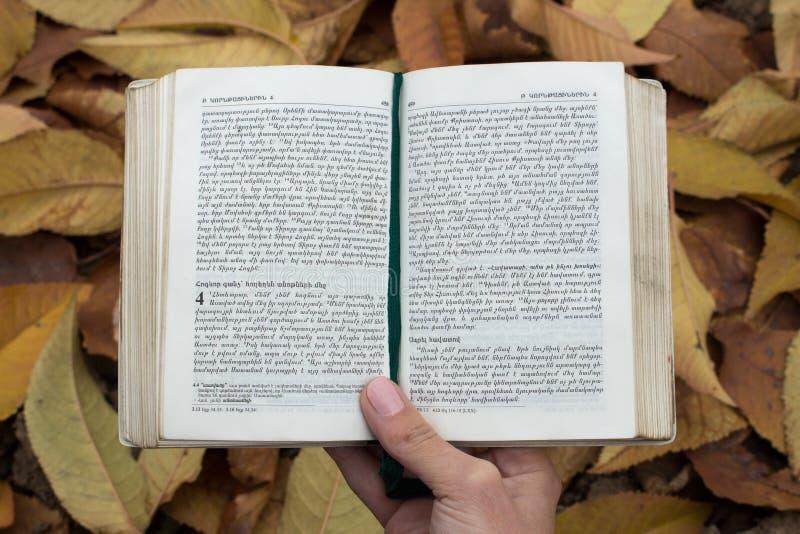Prenoti il primo piano (della bibbia) su un fondo di tenersi per mano delle foglie fotografie stock libere da diritti