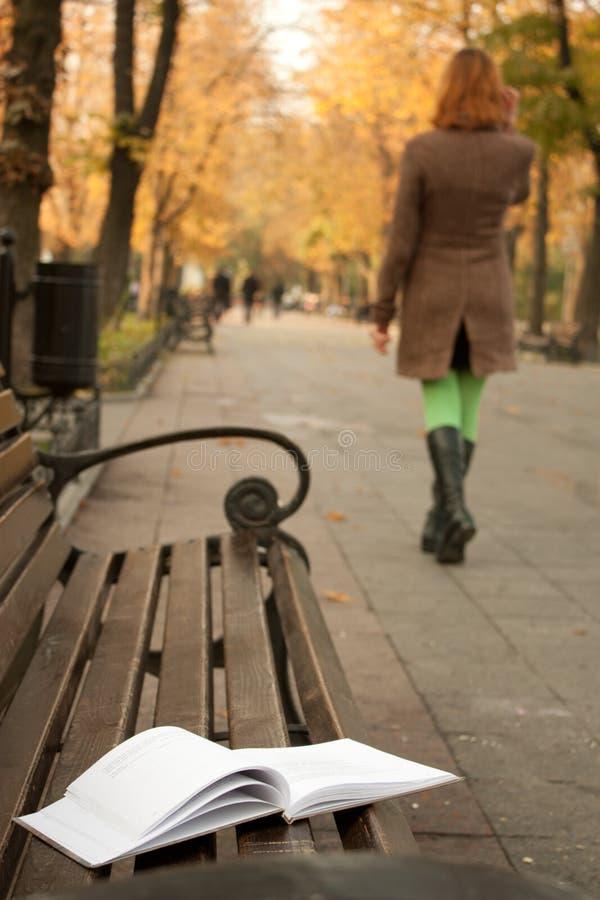 Prenoti a sinistra su un banco nella sosta di autunno immagini stock libere da diritti