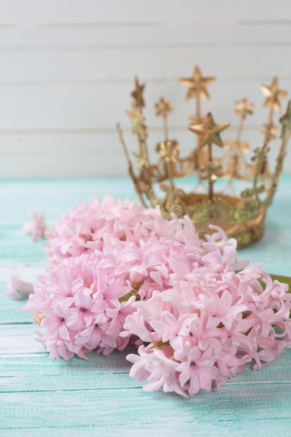 Prentbriefkaar met elegante hyacintenbloemen royalty-vrije stock foto's