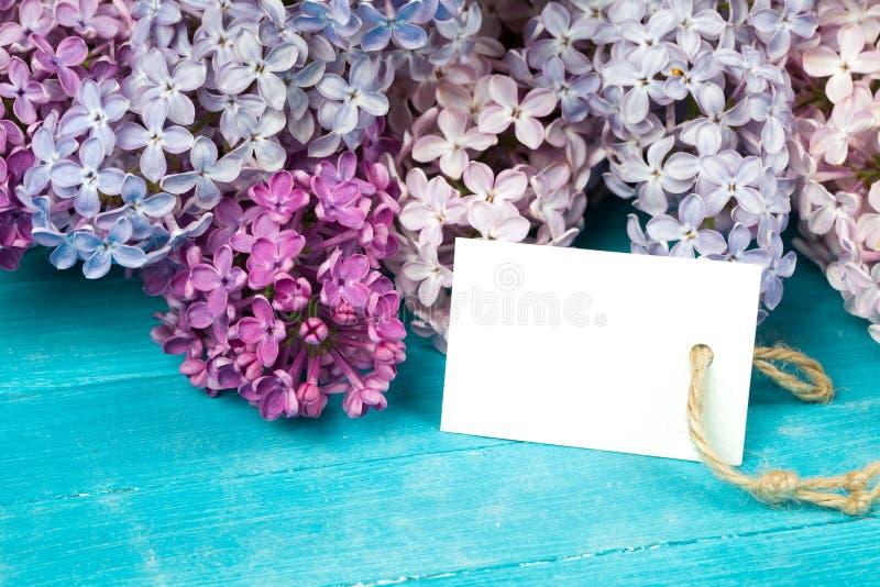 Prentbriefkaar met schitterende lilac bloemen royalty-vrije stock afbeeldingen