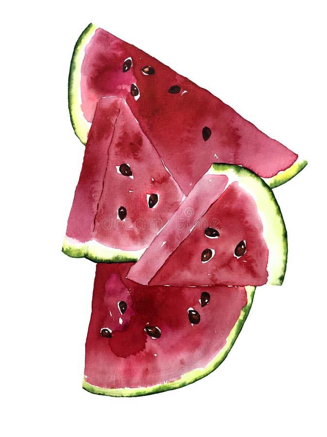 Prentbriefkaar van de de zomer de heldere waterverf met stukken van watermeloen stock illustratie