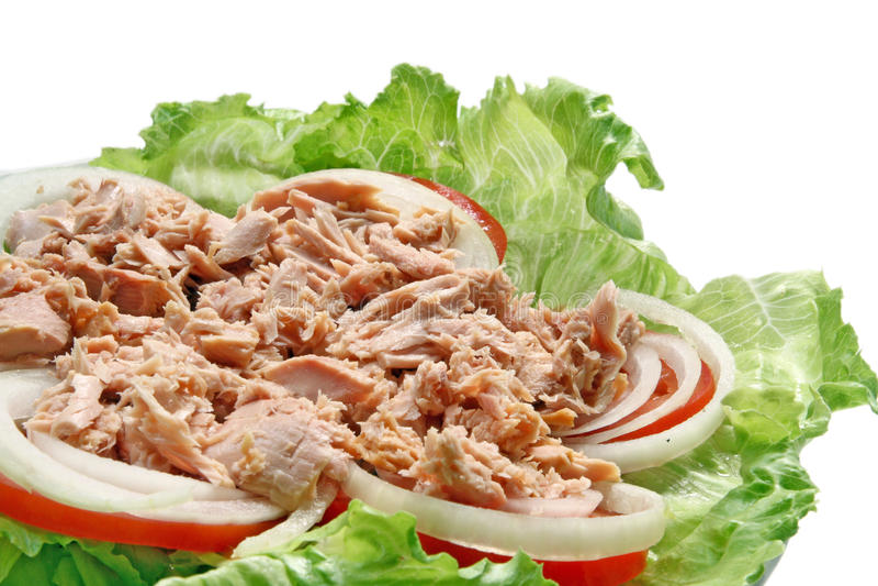 Preparação da salada picante tailandesa do atum imagem de stock