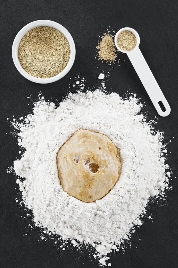 Preparación de la pasta de levadura para la pizza o el pan fotos de archivo libres de regalías