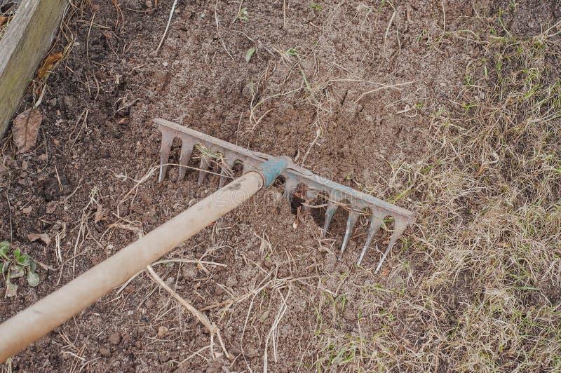 Preparación de la tierra de un diagrama privado para plantar la hierba fresca imagenes de archivo
