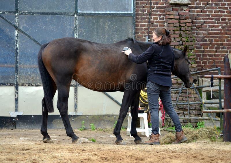 Preparación de su caballo fotografía de archivo