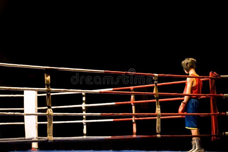 Preparación a la lucha del boxeo imagen de archivo libre de regalías