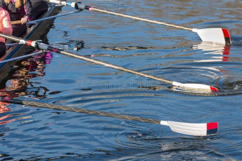 Preparación para de la raza la regata grande pre fotografía de archivo libre de regalías