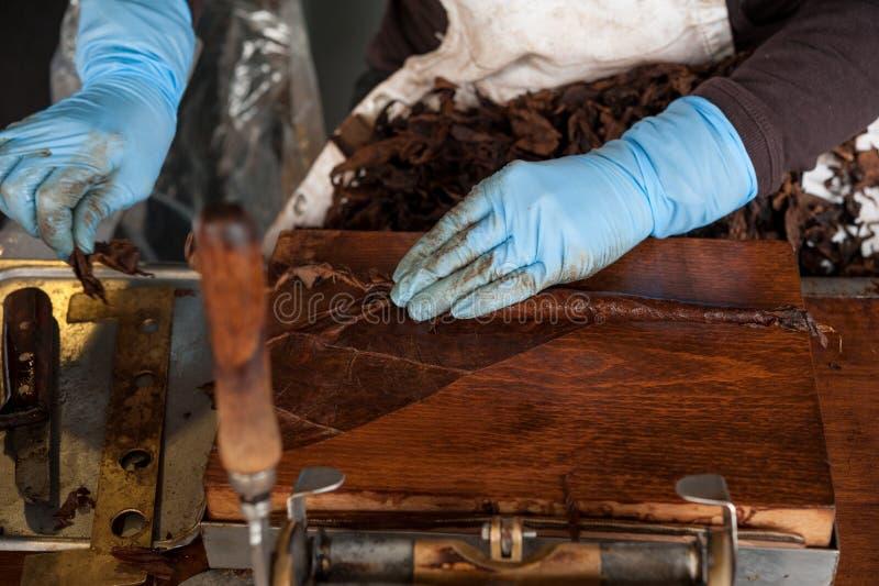 Preparación viva del italiano del cigarro hecho a mano de Toscano imagen de archivo libre de regalías