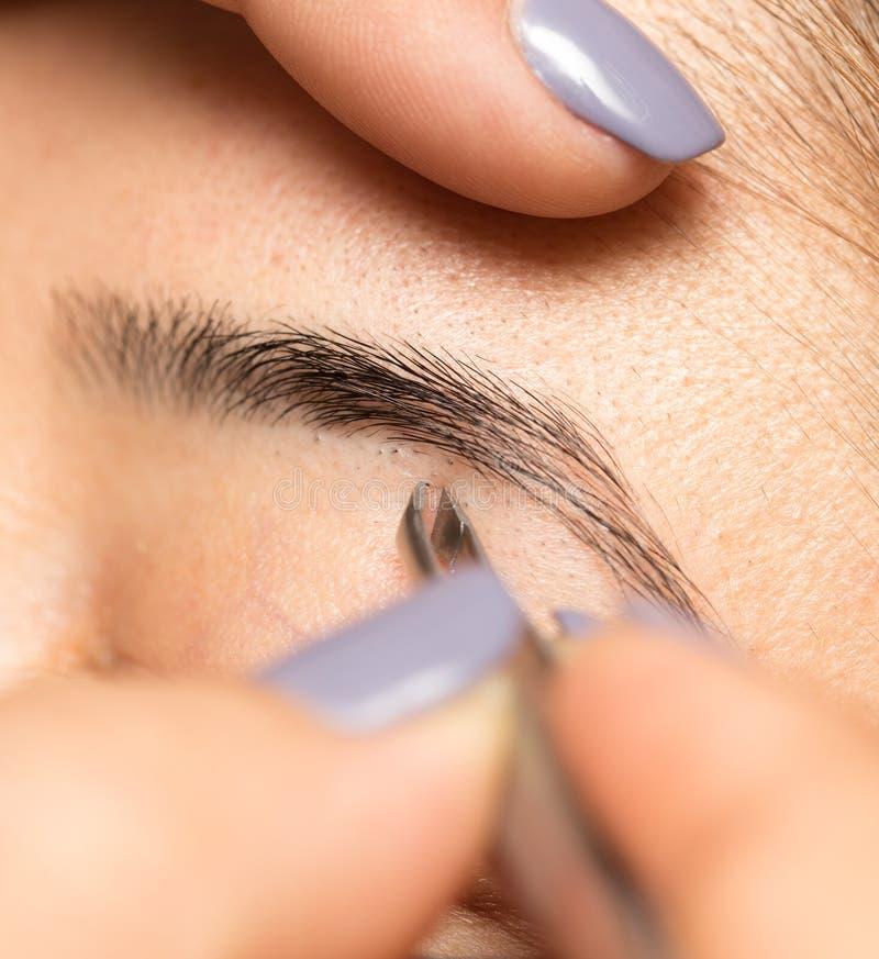 Preparando as sobrancelhas em um salão de beleza imagens de stock royalty free