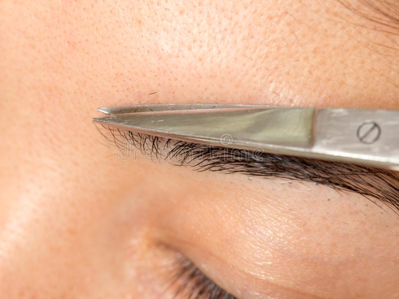 Preparando as sobrancelhas em um salão de beleza fotos de stock royalty free