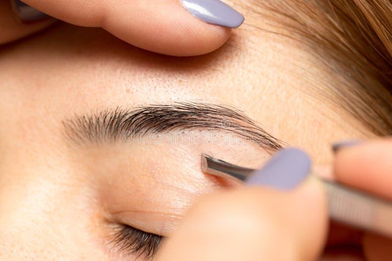 Preparando as sobrancelhas em um salão de beleza fotografia de stock royalty free