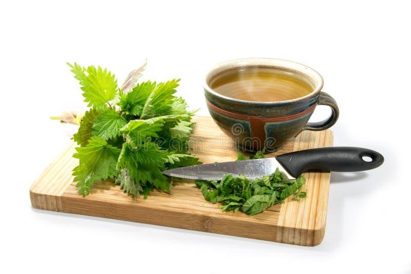 Preparando il tè dell'ortica, le foglie fresche, coltello e un tazza da the rustico sopra immagine stock libera da diritti